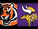 Week 15 / 17.12.2017 / Cincinnati Bengals @ Minnesota Vikings