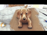 Painting of a dog in 3D _ PET ME _ 3D Drawing Illusion