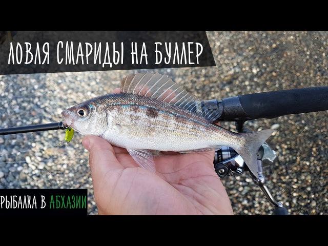 Рыбалка на черном море. Ловля смариды на буллер: РД