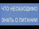 Александр Смирнов Что необходимо знать о питании