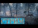 TheHunter Call of the Wild Сибирские горизонты