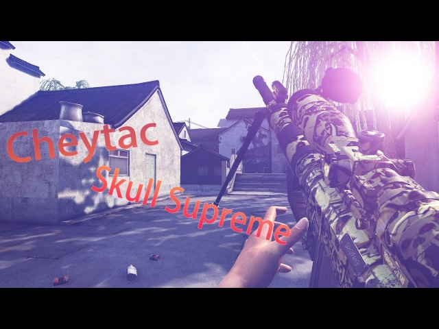 S.K.I.L.L Special Force 2 ♥Cheytac Skull Supreme Fragmovie♥