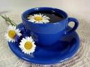 РОМАШКОВЫЙ ЧАЙ: польза и вред травяного чая с ромашкой