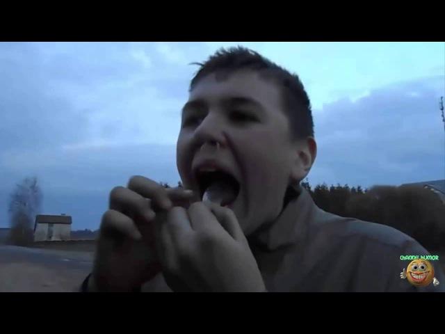 Подборка дебилов по всему миру Прикольное видео 2015
