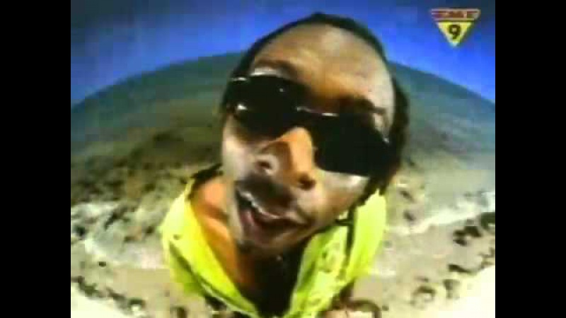 Who Let The Dogs Out (Baha Men - Official Version)