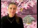 Stepium. Что такое Облачный майнинг