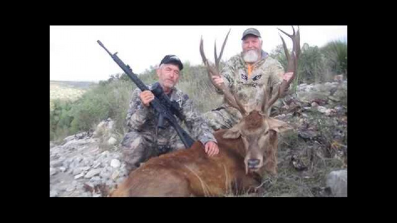 Hunting with Bering Optics D790 Gen 3 Night Vision Riflescope at Steve Forest Ranch TX