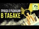 ☢ Правда о радиации в табаке [Олег Айзон]