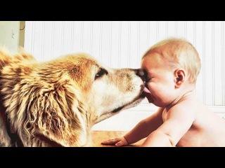 Дети целуют детей