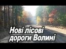 Лісові дороги (Ківерці, К-Каширський, Любомль нарада)