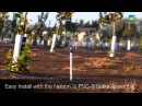 Irrigating Hazelnut trees with the Nelson R10 Rotator® Sprinkler