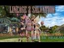 Lineage 2 Salvation: Жизнь Лайфера на Airin RuOff (2ккк за неделю)