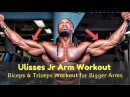 Ulisses Jr Arm Workout | Full Biceps Triceps Workout For Bigger Arms
