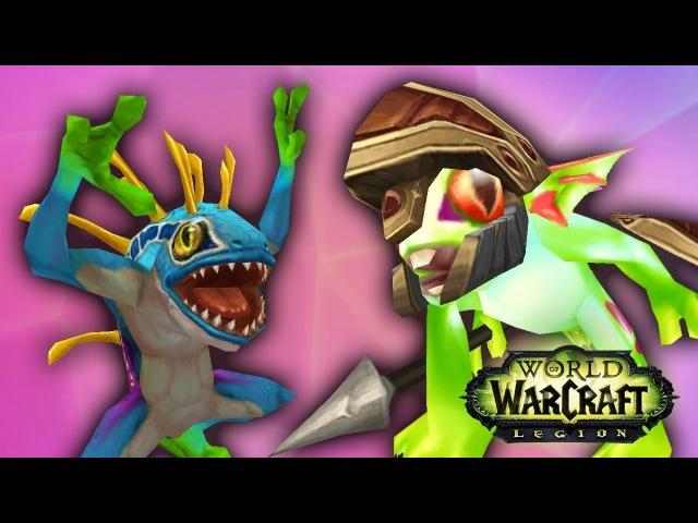 359 ОТКОРМИМ МУРЧАЛЯ! - Приключения в World of Warcraft
