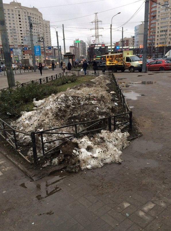 Алексей Добромыслов | Санкт-Петербург