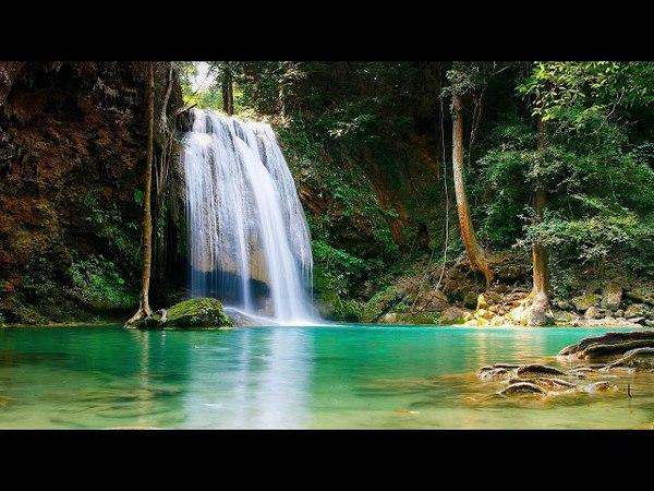 Relax music. Звуки природы. Пение птичек на фоне водопада