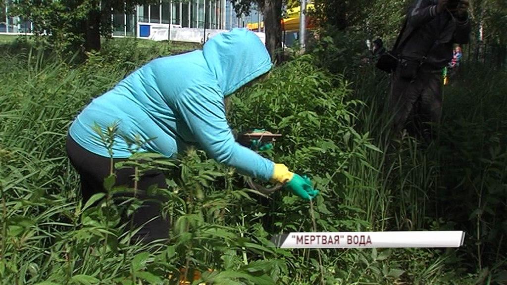 Специалисты проверяют воду в пруду парка Судостроителей в Дядьково