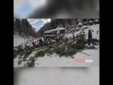 Падение сосны на сноубордистку на «Розе Хутор», 15 февраля