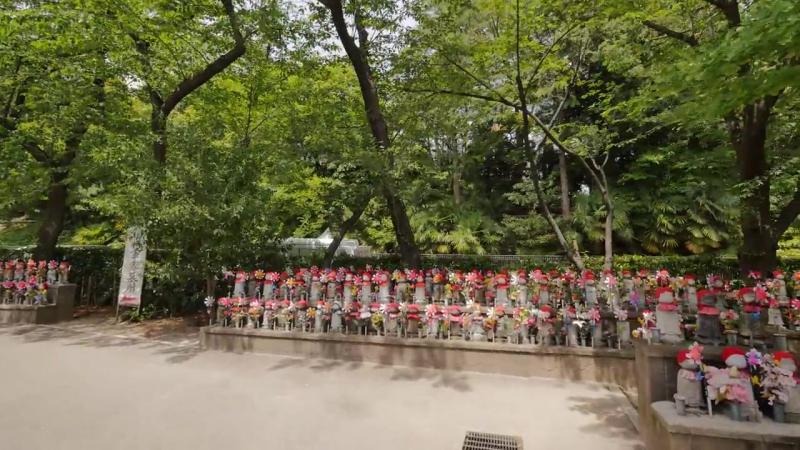 Прогулка вокруг храма Дзодзё дзи и парка Сиба 2017 г