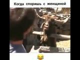Когда споришь с женщиной)