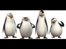 Пингвины из мадагаскара (2014г.)