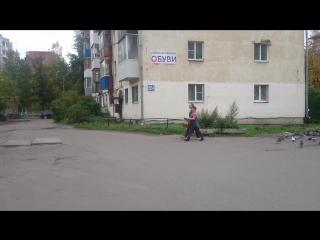 MOV_1317