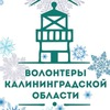 Волонтеры Калининградской области!