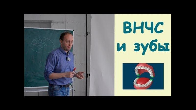 Дисфункции зубочелюстной системы. Височно-нижнечелюстной сустав. Коррекция зубов. Кинезиология.