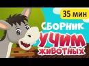 Новый СБОРНИК! УЧИМ ЖИВОТНЫХ для самых маленьких - развивающие мультики для малышей на русском