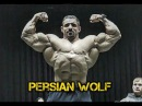 Hadi Choopan PERSIAN WOLF | Strongest 212 Bodybuilder