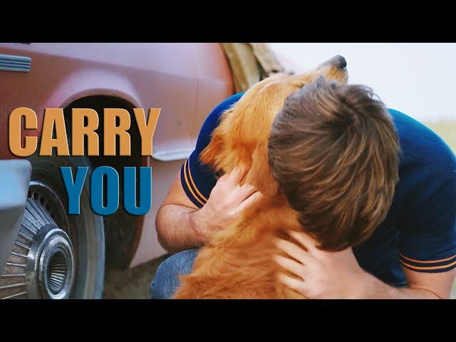 A Dog's Purpose | Ethan Bailey | Carry you