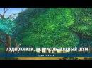 Аудиокниги Некрасов Зеленый шум