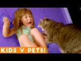 Ultimate Cute Pets vs. Epic Kids Fails Compilation  Funny Pet Videos February 2018