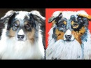 PAINT YOUR PET PARTY from your own photo tutorial