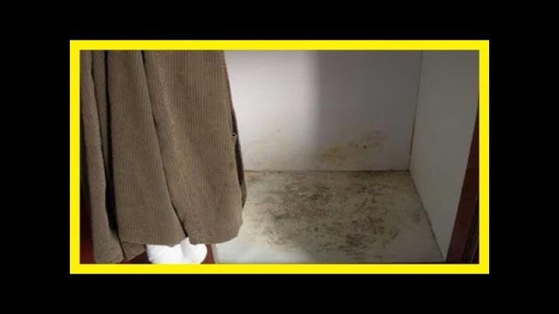 Humedades en armarios Como quitar la humedad y el olor de armarios