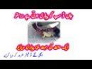 Aik Ajeeb O Ghareeb Video || Video || Amazing Video || Allah Ki Qudrat