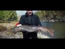 ТАЙМЕНЬ АТАКУЕТ ХАРИУСА/Рыбалка на тайменя в Монголии