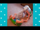 Try Not To Laugh Funny Twin Babies Arguing Funny Babies