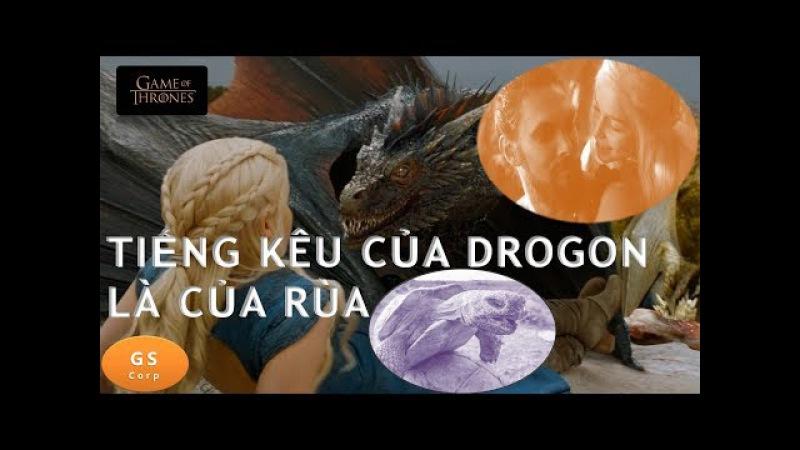 TRÒ CHƠI VƯƠNG QUYỀN Tiếng kêu của Rồng Drogon thực ra tiếng Rùa đực đang … làm chuyện ấy