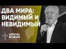 Два мира видимый и невидимый 28 января 2018 Сергей Ряховский