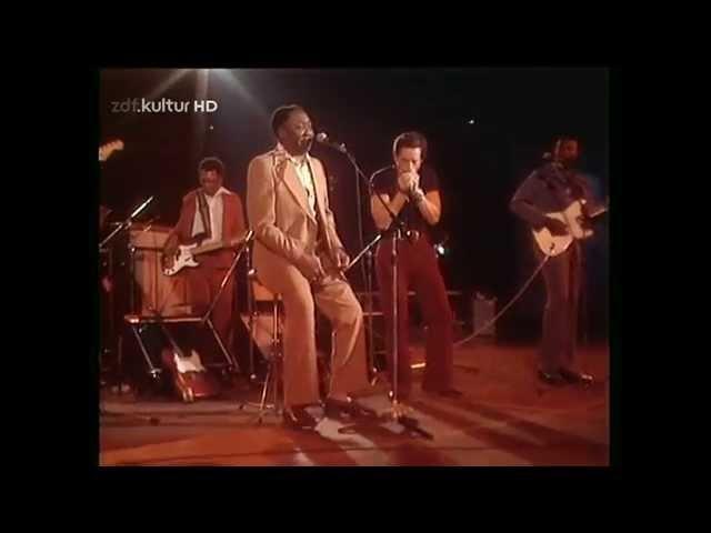Muddy Waters Got My Mojo Workin' HD