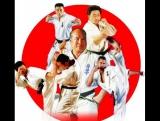 KWF (Kyokushin World Federation) Представительство