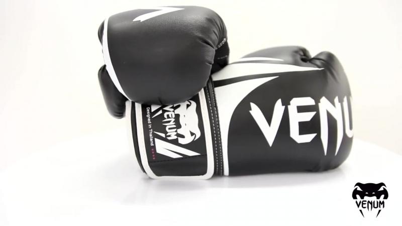 Недорогие боксерские перчатки для начинающих VENUM CHALLENGER 2 0