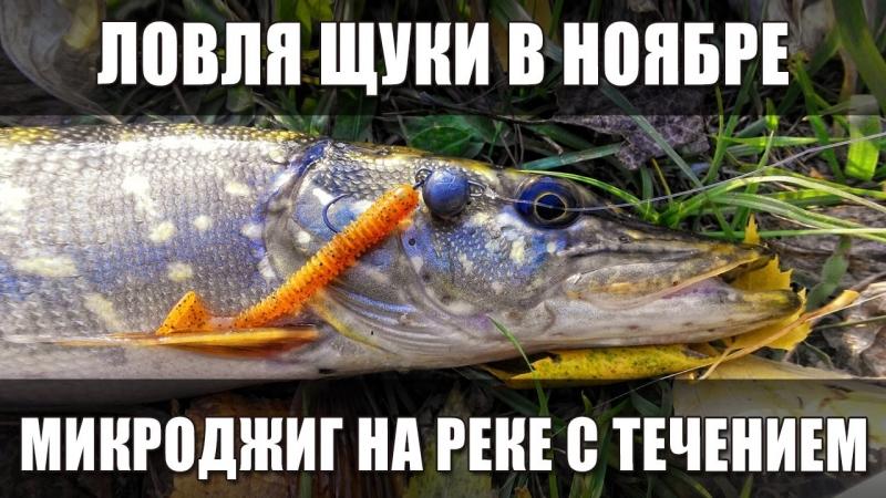 [Angler.UA - Рыболов.UA] Ловля щуки в ноябре на реке с течением на микроджиг. Город Переяслав-Хмельницкий, река Трубеж.
