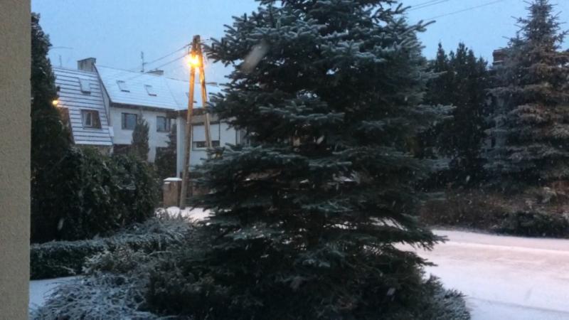 Польша 🇵🇱 дождалась снега 😁