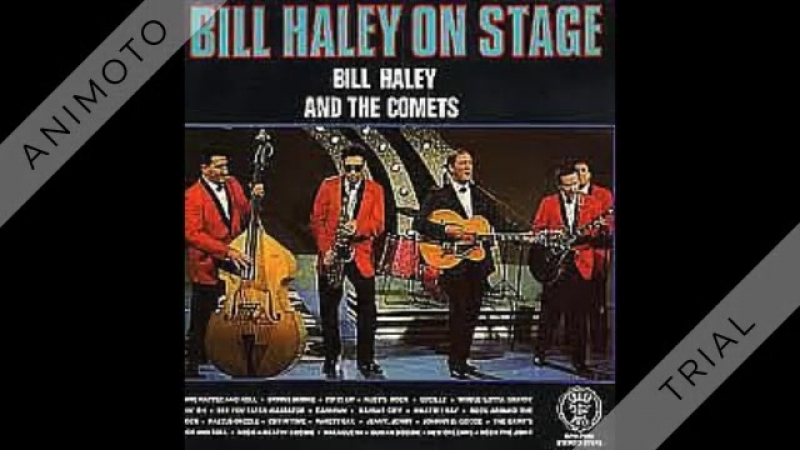 Bill Haley his Comets - Skinny Minnie - 1958
