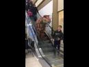 В ТЦ Бийска гуляет динозавр