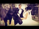 Свадьба  Александра и Любаши