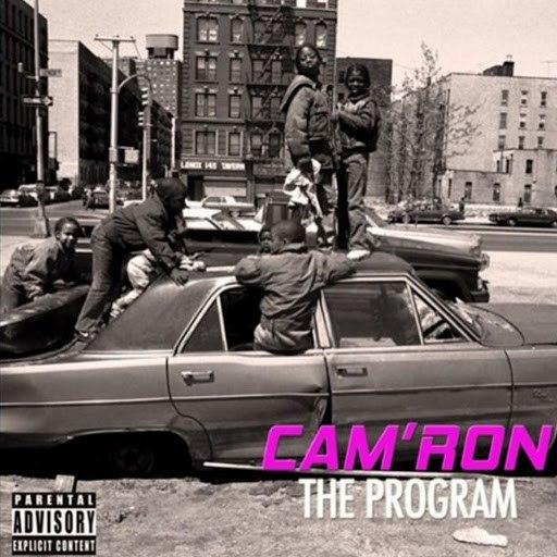 Cam'ron альбом The Program