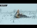 Видео с места крушения Ан-148 в Подмосковье